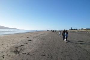 Dream Escape for 2 - Accommodation - Paraparaumu Beach