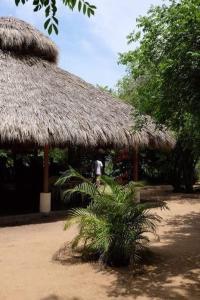 Mondala Hostal Carrizalillo, Хостелы  Пуэрто-Эскондидо - big - 35