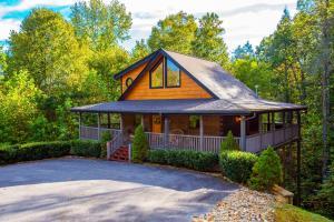 Cedar Forest - Townsend