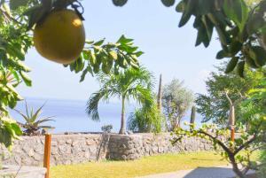 Cap Soleil, Ferienwohnungen  Saint-Leu - big - 85