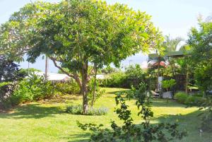 Cap Soleil, Ferienwohnungen  Saint-Leu - big - 114