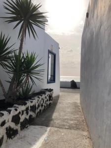 Casita Lanzaocean view, Apartmanok  Punta de Mujeres - big - 11