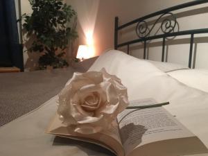 Juliet Room - AbcAlberghi.com