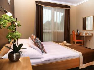 Alfa Hotel és Wellness Centrum, Hotely  Miskolctapolca - big - 37