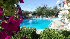 Flamingo Apartments - Agios Ioannis Peristerion