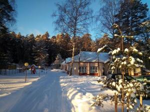 Bor na Volge Hostel - Karachary