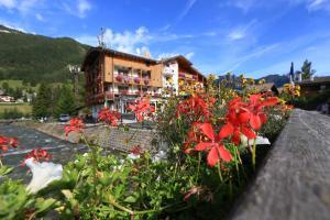 Hotel Alaska - AbcAlberghi.com