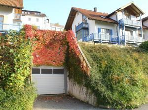 Ferienland Sonnenwald - Hof