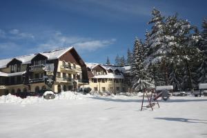 Hotel Ruia, Hotely  Poiana Brasov - big - 23