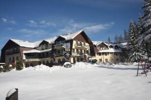 Hotel Ruia, Hotely  Poiana Brasov - big - 22