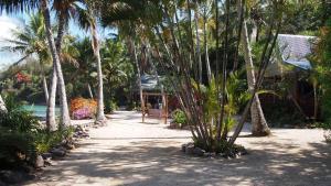 Palm Bay Resort (3 of 49)