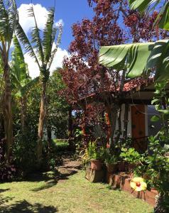Cabanas Hinariru Nui, Lodge  Hanga Roa - big - 75