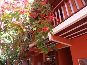 Гостевой дом Flores de Búzios Suítes, Армасан-дус-Бузиус