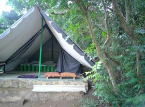 Knuckles Nature Camp - Weralugastenna
