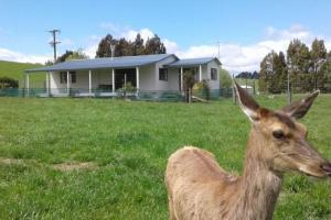 obrázek - Wilderness Cottage