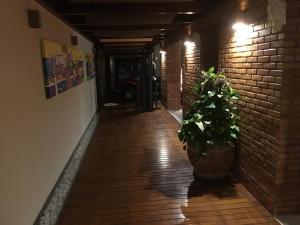 Casa de Ponta das Canas, Holiday homes  Florianópolis - big - 4