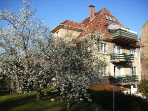 Alices-Ferienwohnung - Arnstadt