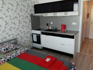 Apartment Sportovy