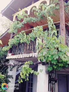 obrázek - Apartament Mira