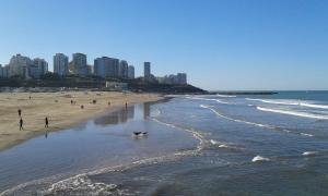 Hotel Catedral, Hotels  Mar del Plata - big - 51