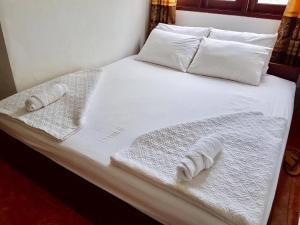 Paksan rose' guesthouse - Muang Pakxan