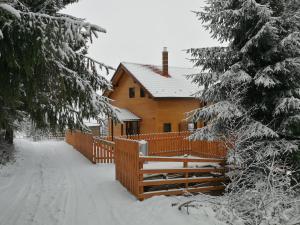 Cabana Cindy, Holiday homes  Muntele Cacovei - big - 9