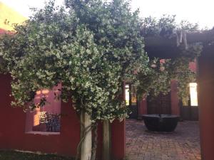 La Negrita Casa Hotel, Дома для отпуска  Аскуэнага - big - 6
