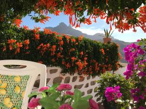 Casita Bentayga, Tejeda - Gran Canaria