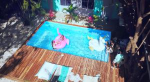 La Oveja Tamarindo Hostel & Surf Camp