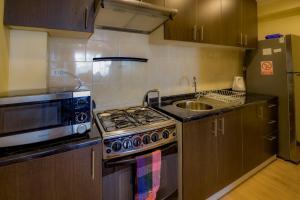 Apartamentos Entre Fronteras, Апартаменты  Пунта-Аренас - big - 12