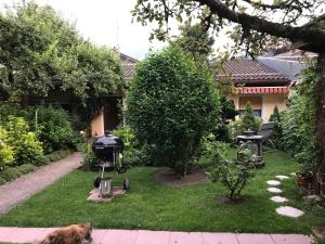 Ferienwohnung-Haus-Auer - Weissbach
