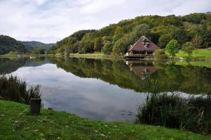 Eifel & See - Ferienwohnungen am Waldsee Rieden/Eifel - Arft