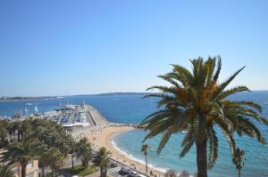 Apartments Clemenceau, Appartamenti  Cannes - big - 15