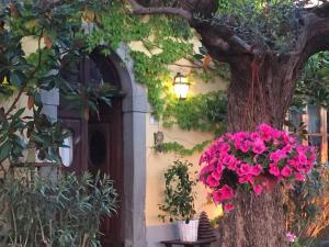 Picture of Il Sole Del Sodo