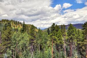 Mountain Thunder Lodge, Apartmánové hotely  Breckenridge - big - 9