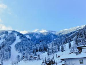 Sunny Ferienwohnungen Ski In - Ski Out, Apartments  Zell am See - big - 28