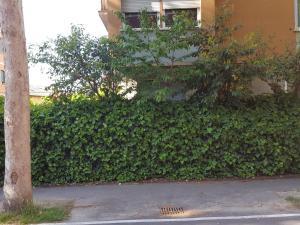 bunker verde - AbcAlberghi.com
