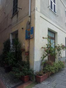 Affittacamere Rosa Dei Venti, Bed and Breakfasts  Levanto - big - 15