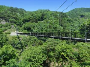 Hotel Sunshine Kinugawa, Hotels  Nikko - big - 60