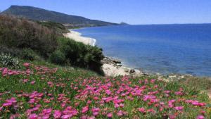 Residenza sul mare - AbcAlberghi.com