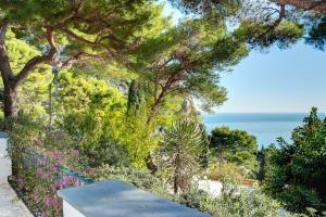 Villa Bouganvillae, Villen  Capri - big - 20