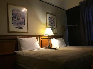 Auberges de jeunesse - Hotel Ambassador