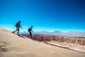 Alto Atacama (17 of 87)