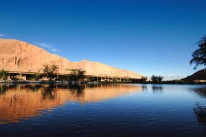 Alto Atacama (7 of 87)