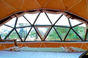 Llaimadomo Lodge, Turistaházak  Melipeuco - big - 22