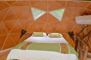 Llaimadomo Lodge, Turistaházak  Melipeuco - big - 7