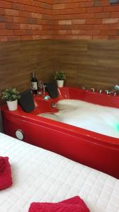 Cracow Jacuzzi Apartments Red Room