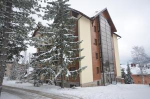 Sweet Dreams SPA, Apartments  Zlatibor - big - 11