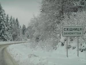 Villa Ignatyeva, Villas  Skhidnitsa - big - 53