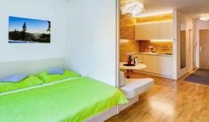 Apartman Medvědín 306 - Hotel - Špindlerův Mlýn